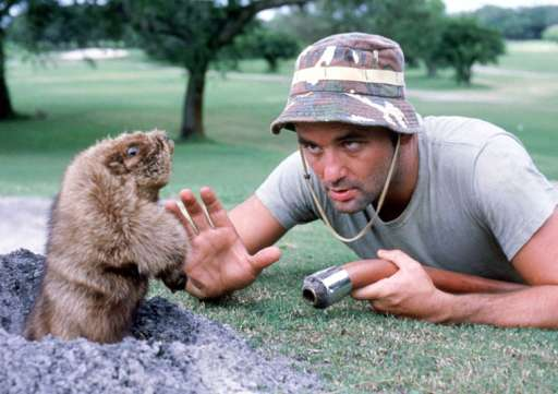 1aacarl-the-greenskeeper-caddyshack2.jpg