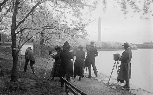 Photographers_shooting_Cherry_blossoms_1922_0.jpg