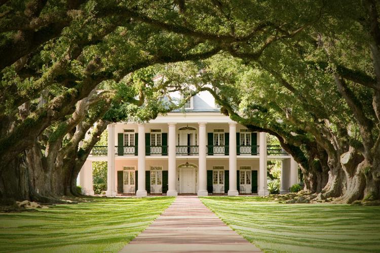 plantation1.jpg